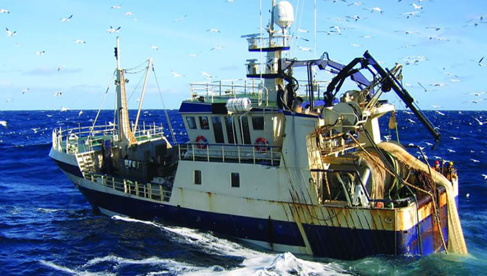 Career Opportunities in the Sea Food Industry