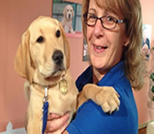 Life as a guide dog puppy trainer